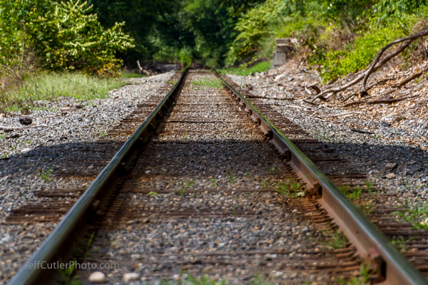 Rail tracks through the National Park at the Kelly House